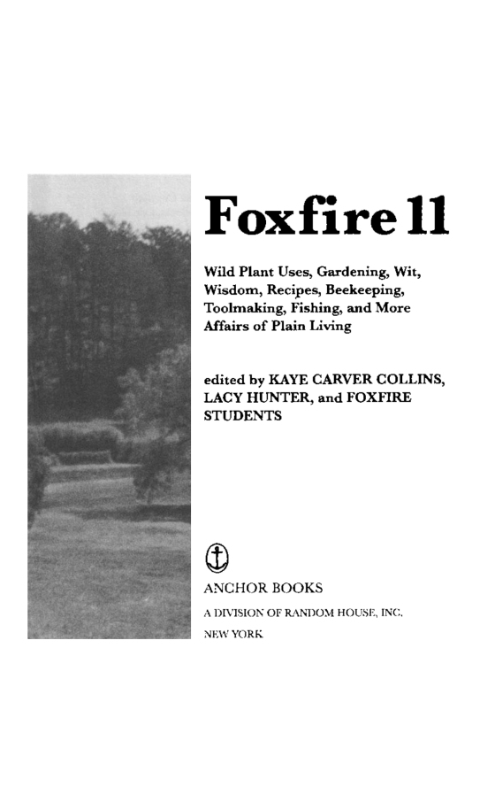 blowguns and bouncing pigs traditional toymaking foxfire fund inc