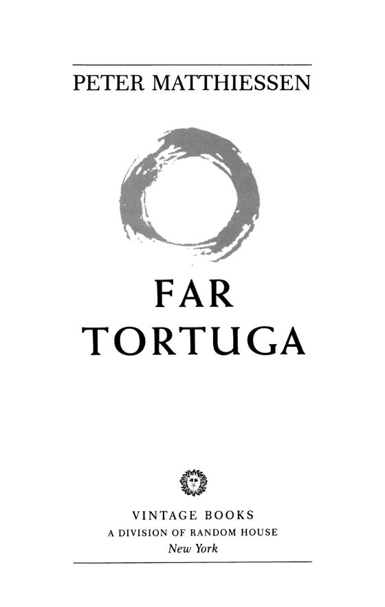 Far Tortuga Penguin Random House Education