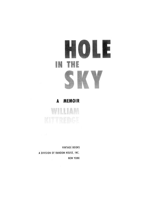 hole in the sky a memoir