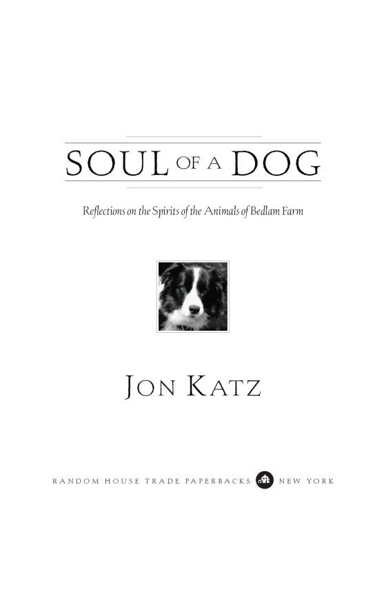 Soul of a Dog - Penguin Random House Education