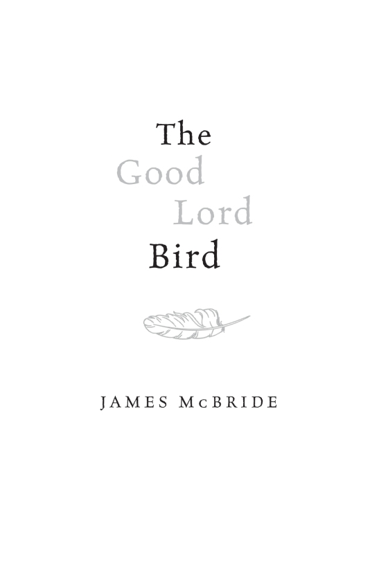 The Good Lord Bird Penguin Random House Common Reads